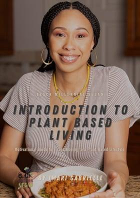 Black Millennial Vegan Recipe ebook