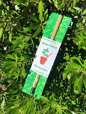 Kiwi Eco Box
