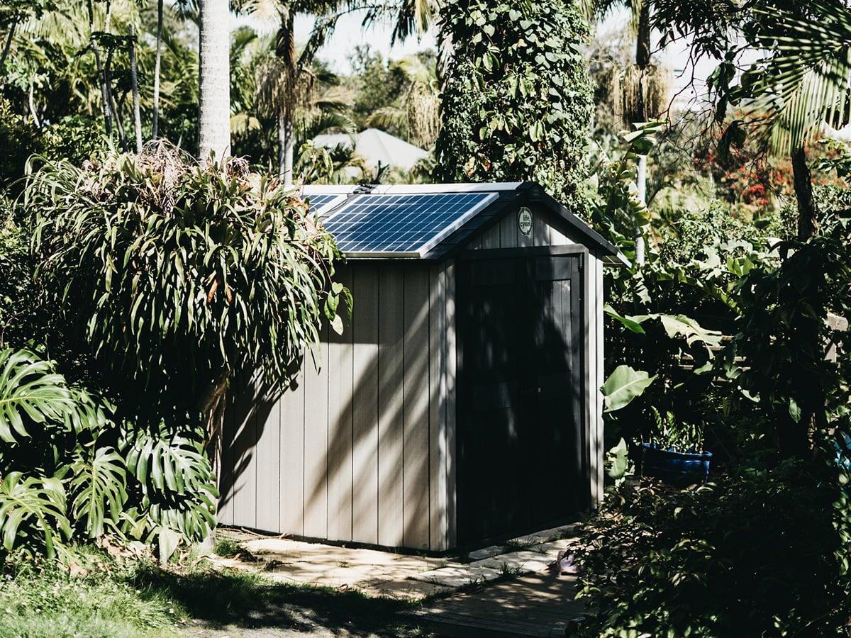 Life Cykel solar shroom room.