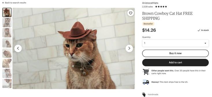 cowboy hat cat etsy payments