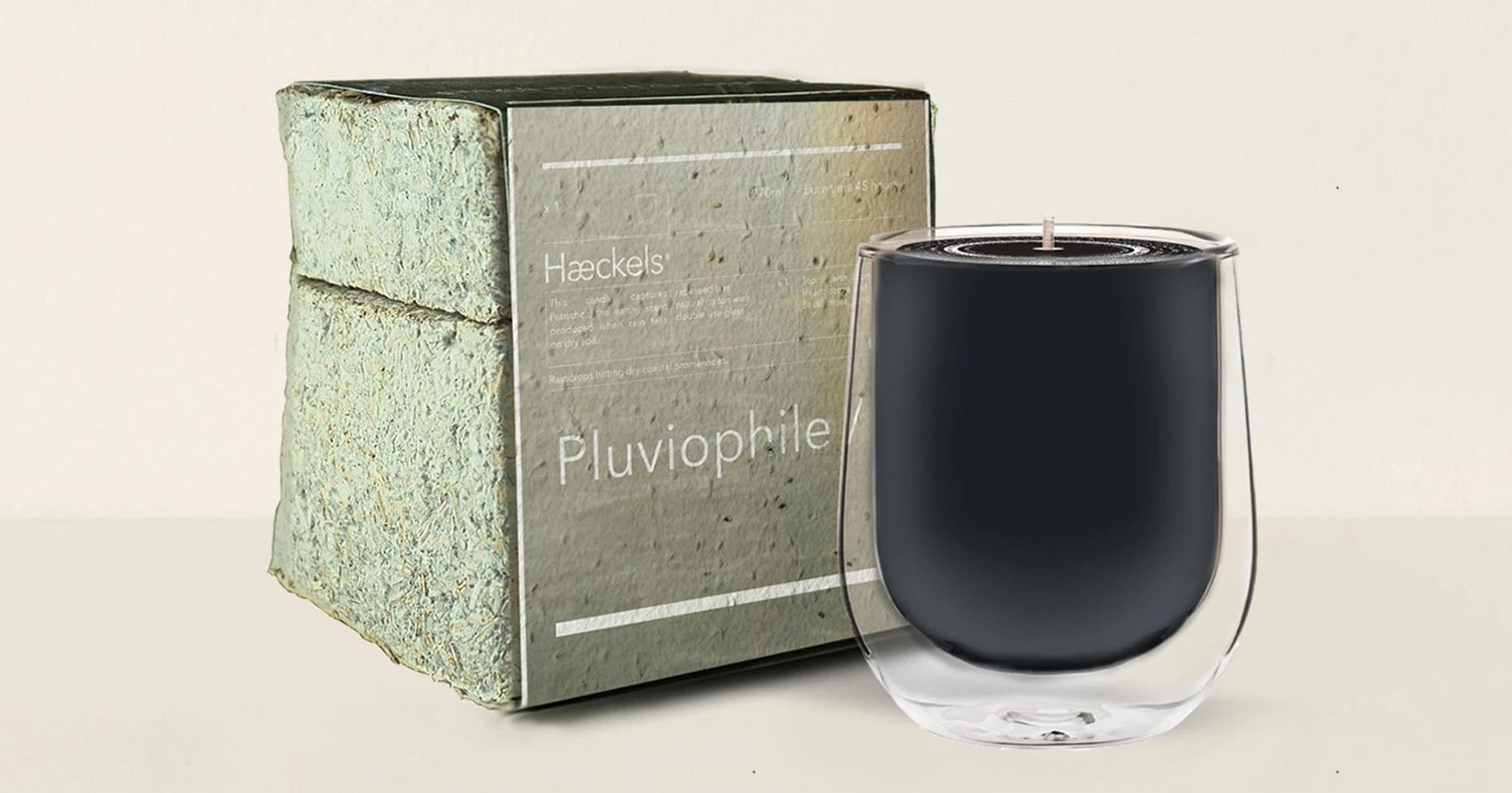 Haeckels Pluviophile Rain Candle