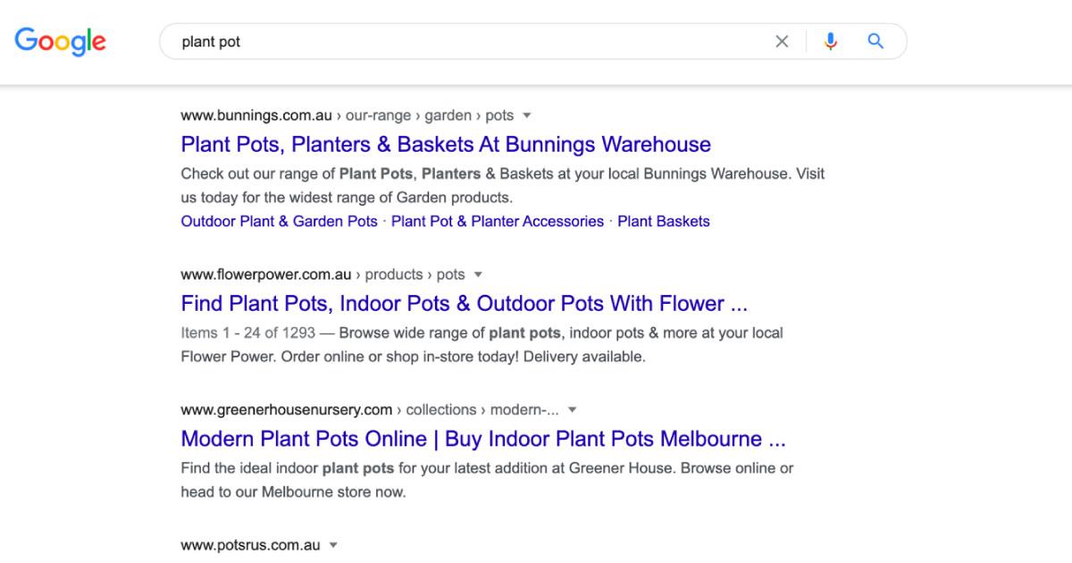 plant google serp